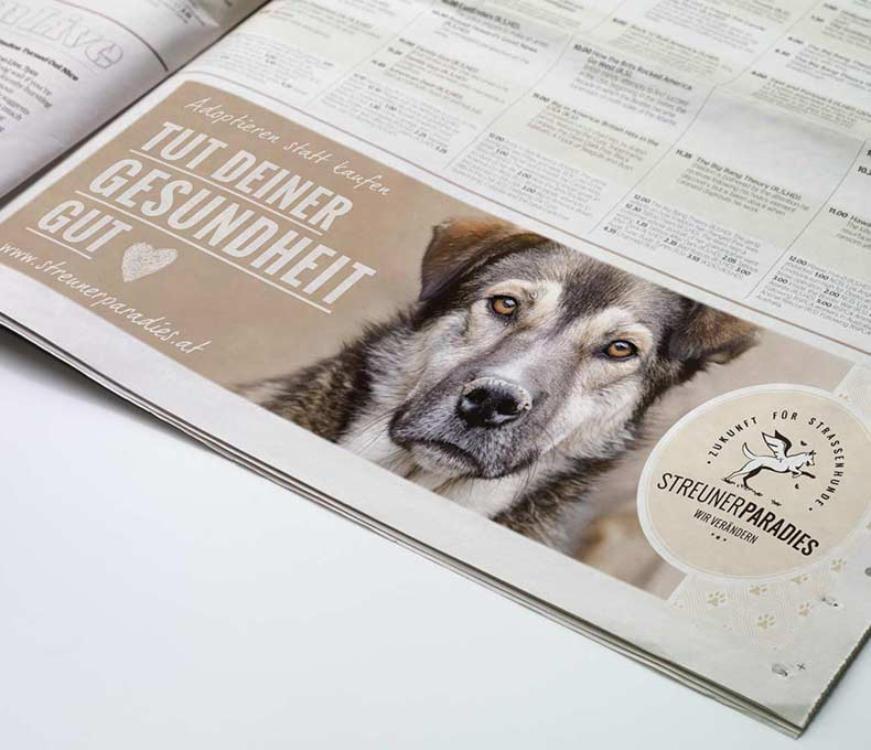 True-Creative-Agency-Streunerparadies-Werbedesign-4-1